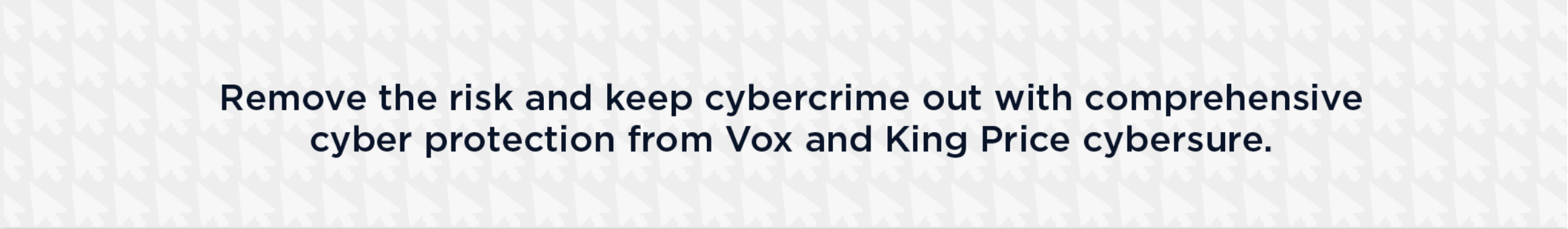 Remove the risk and keep cybercrime out with comprehensive cyber protection from Vox and King Price cybersure.